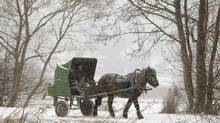 A man rides a horse-drawn cart during heavy snow fall. (VASILY FEDOSENKO/REUTERS)