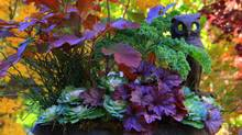 Fall planters should have colour, texture and motion from foliage. (Picasa/Toronto Botanical Garden)