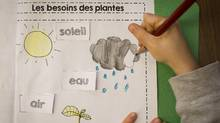 A student in the French Immersion program at Laura Secord Elementary in Vancouver April 3, 2014. (John Lehmann/The Globe and Mail)