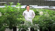 Mark Zekulin, president of Tweed Inc. is pictured in the grow room January 21, 2016 in Smith Falls (Dave Chan for The Globe and Mail)