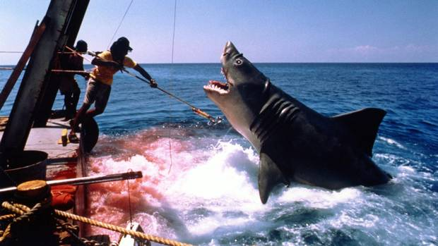 a review of timeless classic movie jaws No review of jaws should tell you too much of what happens, but every review   on another level it offers a nostalgic look at a classic movie  a decade-by- decade survey of timeless movies including untold secrets of.