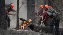 Firefighters tackle a flare up at the Smith Creek fire located on a hillside in West Kelowna, B.C., Saturday, July, 19, 2014. Nearly 200 wildfires were active on Sunday, August 3, 2014. (JONATHAN HAYWARD/THE CANADIAN PRESS)