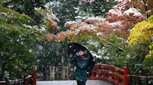 A visitor takes a photo in the snow at the Tsurugaoka Hachimangu Shrine in Kamakura, near Tokyo, Thursday, Nov. 24, 2016. Tokyo residents woke up Thursday to the first November snowfall in more than 50 years. (Shizuo Kambayashi/AP)