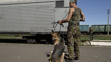 Dana, the German shepherd patrols along with a pro-Russian rebel next to a refrigerated train loaded with the bodies of passengers in Torez, eastern Ukraine, Monday, July 21, 2014. THE CANADIAN PRESS/AP, Vadim Ghirda