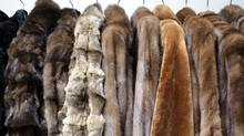 Fur coats photographed at Yukon Fur Co. Ltd. on Spadina Av. Toronto. (Fernando Morales/The Globe and Mail)