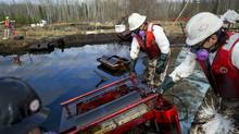 Crews work to clean up oil at a beaver dam from a pipeline spill, owned by Plains Midstream Canada, 12kms from Little Buffalo 100kms from Peace River in northern Alberta on May 10, 2011. The 4.5 million litre spill is the largest in Alberta since 1975. (Jimmy Jeong/JimmyShoots.com)