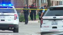 Nykea Aldridge, the 32-year-old cousin of NBA star Dwyane Wade, was killed in a shooting on Chicago's South Side - a day after her family spoke on a panel against gun violence. Jillian Kitchener reports. (Reuters)