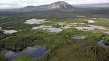 Canada's boreal forest holds half of the world's lakes larger than a square kilometre in size, and its wetlands encompass 1.2 million square kilometres. (Chad Delany/Pew Environment Group)