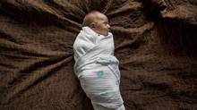 Swaddled three-week-old Theo Macintosh (Deborah Baic/The Globe and Mail)