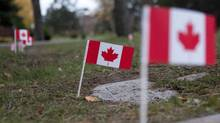 Flags stand by graves in Sanctuary Park Veterans Cemetery in Toronto on Sunday November 4, 2012 after local army cadets placed 1213 Canadian flags as a tribute to past and present members of the Canadian Forces. (Chris Young For The Globe and Mail)