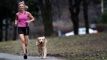 Kerry Mitchell jogs with her golden retriever, Dutch. (Tim Fraser for The Globe and Mail)