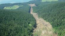 The Johnsons Landing landslide is shown in this Thursday July 12, 2012 handout photo. An evacuation alert has been issued for residents of Johnsons Landing on Kootenay Lake in southeastern B.C. after reports that Gar Creek was running muddy and materials on a slope appear to be shifting (HO-Emergency BC/THE CANADIAN PRESS)