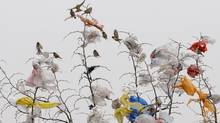 Birds share a perch with a flock of plastic bags in Changxi, China. (Reuters)