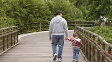 Several European countries have implemented successful paternity-leave programs.