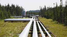 Oil, steam and natural gas pipelines run through the forest at the Cenovus Foster Creek SAGD oil sands operations near Cold Lake, Alberta. (TODD KOROL/REUTERS)