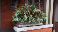 "Whether creating an arrangement for a window box, urn or other weatherproof container, ""Let your imagination run wild,"" says Paul Zammit of the Toronto Botanical Garden. (Paul Zammit/Toronto Botanical Garden for Sweetpea's)"
