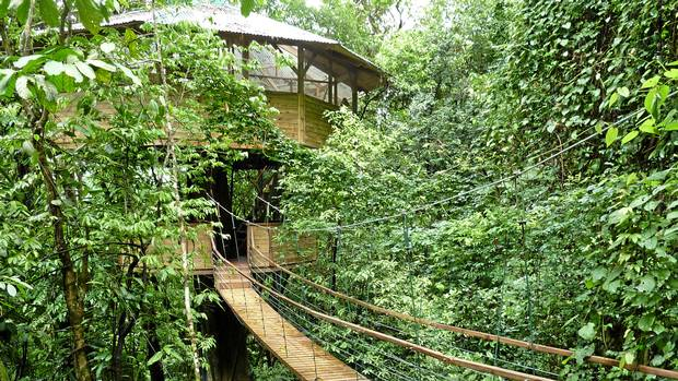 In costa rica jungle tree houses bring out your inner for Jungle house costa rica