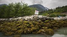 The proposed site of the Woodfibre LNG project near Squamish, B.C. (John Lehmann/The Globe and Mail)