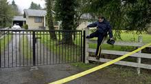 A member of the RCMP climbs a fence outside a home in Langley, B.C. where a body was found Wednesday, February, 27, 2013. The home in which the body was found is a suspected grow up. (Jonathan Hayward/THE CANADIAN PRESS)