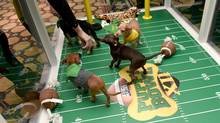 Animal Planet's Puppy Bowl XII, airing on Sunday, at 3 p.m., is goofy, pun-filled pandemonium as the puppies run around and fall over. (Amanda Edwards/Getty Images)