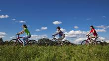 People ride bikes in a park. (gbh007/Getty Images/iStockphoto)
