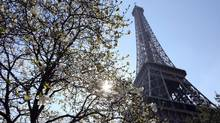 Trees bloom near Eiffel Tower in Paris. (LUDOVIC MARIN/AFP/Getty Images)