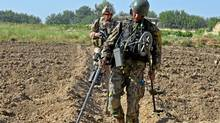 An Afghan engineer belong to 205 Corps sweeps a field looking for homemade explosives in the Zangabad region of Panjwaii district on June 2, 2011. (Murray Brewster/The Canadian Press/Murray Brewster/The Canadian Press)
