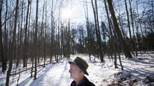 Jim Robb, walking through Toronto's Rouge Park in November, says the park tours that he – as manager of Friends of the Rouge Watershed – leads school children on may be the only exposure to real nature they have all year. (Darren Calabrese for The Globe and Mail)