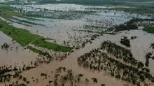 Rising flood waters inundate fertile farmland near Rockhampton, Australia, on Jan. 5, 2011 (TORSTEN BLACKWOOD)