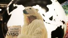 An activist dressed as a polar bear holds a sign urging nations at the Copenhagen climate summit to agree to limit carbon in the atmosphere to 350 parts per million, the level many scientists believe is the maximum that can be sustained without triggering catastrophic warming. Heribert Proepper/AP (Heribert Proepper)
