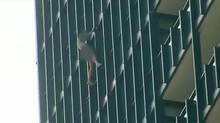 Police and firefighters descended on an apartment building at Charles and Jarvis Streets on Sept. 1, 2013, after receiving multiple calls about a scantily clad man climbing on the outside of the building's 23rd floor. (CTV)