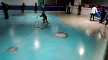 The handout picture taken in November 2016 and released on November 28, 2016 shows people skating on an ice rink with 5,000 frozen dead fish inside at the Space World amusement park in Kitakyushu, southwestern Japan. The park operator closed its ice rink on November 27 after drawing a barrage of criticism. (AFP/Getty Images)