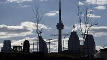 The CN Tower (centre) is framed by small saplings and condo developments as seen from the West Don Lands near Bayview Ave and Eastern Ave. on Oct 30 2015. (Fred Lum/The Globe and Mail)