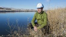 Leland Jackson looks out over a holding pond that supplies treated water to 12 test steams at the Advancing Canadian Wastewater Assets site in Calgary. Like a 10-year-old's dream project, the rivers can be manipulated with contaminants to compare treatment options in a nearly real-world setting. (Chris Bolin For The Globe and Mail)
