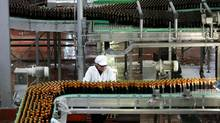 A worker reviews a production line of beer at Bavaria´s brewery in Tocancipa, Colombia. (ELIANA APONTE/REUTERS)