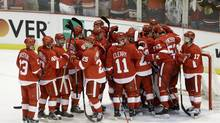Detroit Red Wings celebrate their victory over the Chicago Blackhawks (Paul Sancya/AP)