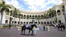 Gulfstream Park Racing and Casino near Ft. Lauderdae, Fla. (Tibor Kolley/The Globe and Mail)