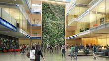 Interior Green wall drawing. Renderings are courtesy of Wilfrid Laurier University. (Diamond and Schmitt Architects and David Thompson Architect/Diamond and Schmitt Architects and David Thompson Architect)