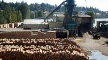 Logs to be processed are pictured at Interfor's Acorn Division mill in Delta, B.C., on Friday September 14, 2012. (Darryl Dyck/The Globe and Mail)