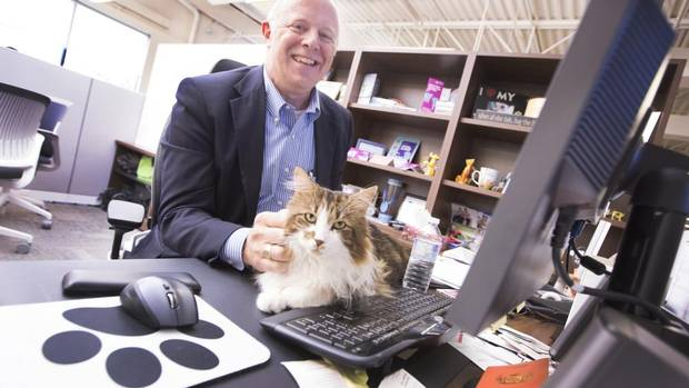 Randy Valpy, top Dog at Pets Plus Us, pets the office cat, Bruin. The company, which provides insurance for pets, encourages their employees to bring their pets to work with them. (PETER POWER FOR THE GLOBE AND MAIL)