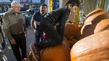 Robert Taylor, left, and Jehad Al Sebai watch Mohamad, 8, climb a pumpkin display Wednesday. The Syrian family met their Ottawa refugee sponsors at a grocery store to pick out seasonal supplies. (Justin Tang/The Globe and Mail)
