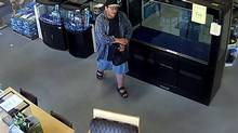 The suspect in a bird-napping in Richmond, B.C. is seen in this security camera handout photo. RCMP say a man stuffed Sky into a black shopping bag and dashed out of Ackroyd Pets and Aquariums in Richmond, B.C. (HO/THE CANADIAN PRESS)