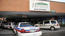 Toronto Police and the OSPCA raided the Toronto Humane Society offices and shelter on River Street. (Fred Lum)