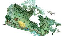 Detail of illustration prepared for the print version of this story (Steven Hughes For The Globe and Mail)