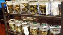 Several varieties of marijuana buds are displayed for sale at a medical marijuana center in Denver in this April 2, 2012 file photo. Colorado voters passed a ballot measure on November 6, 2012 making their state the first to legalize possession and sales of marijuana for recreational use, putting the state at odds with federal law. (RICK WILKING/REUTERS)