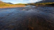 The Sacred Headwaters is a subalpine basin in northern British Columbia that is the source of three wild salmon rivers: the Skeena River, the Nass River and Stikine River. (Brian Huntington/the Outdoor Recreation Council)