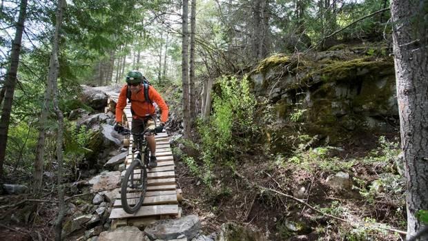 Mountain Biking For Beginners  - cover