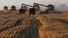 Agriculture is vulnerable to changing weather and many regions are expected to experience more frequent and intense droughts. (Ilya Naymushin/Reuters)