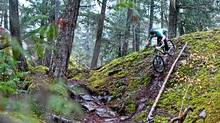 Downhill mountain biking in Whistler, B.C. (Tourism Whistler / Chad Chomlack/Tourism Whistler / Chad Chomlack)