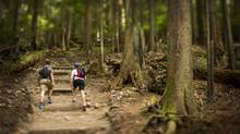 The Grouse Grind is an unrelentingly steep ascent, but hardly worth including on a 'deadliest in the world' list. (John Lehmann/The Globe and Mail)